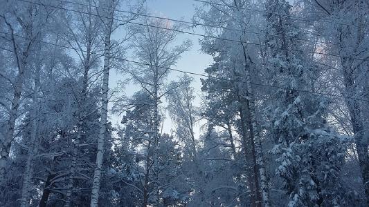 Аномальный мороз придет вПермский край: МЧС предупредило обопасности